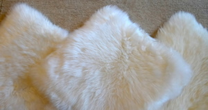 Cushions in sheepskin