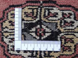 Boukhara 240x167