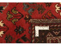 Shiraz 283x194